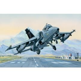 Kit in plastica aerei HB81741
